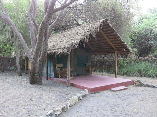 Natron River Camp: Vue de la tente