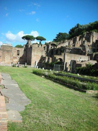 Roman Forum: Casa delle Vestali