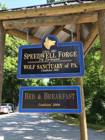 Speedwell Forge B&B: entrance to the B&B