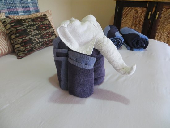Las Ranitas Eco-boutique Hotel : Towel elephant!