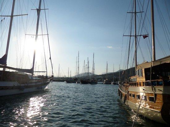 Port Bodrum Yalikavak: porto