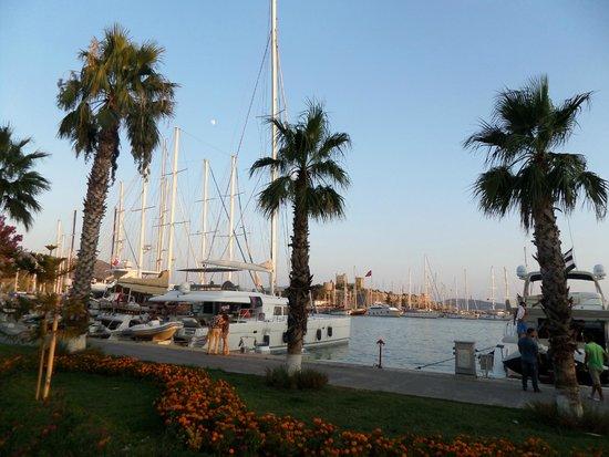 Port Bodrum Yalikavak: porto 2