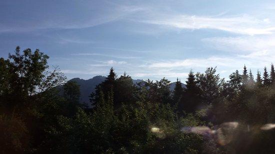 Gaestehaus Fellerhof: Blick aus dem Fenster....im August 2014