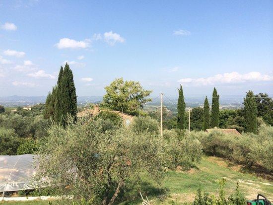 Agriturismo Il Castagnolino: Panorama dall'agriturismo