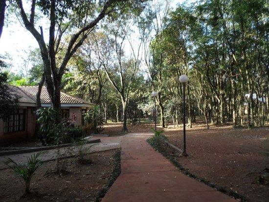 Cabanas Del Lenador Hotel: Jardin/patio