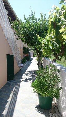 Coral Hotel: Walk to garden annexe