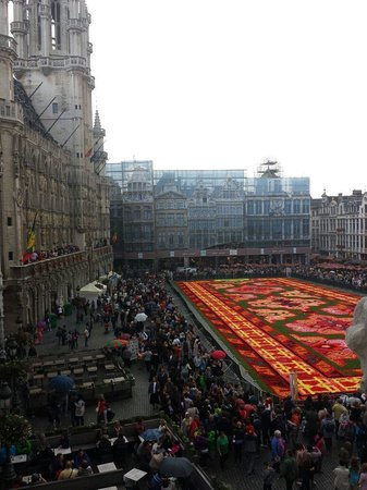 Gran Plaza: Grand Place 17.8.14 Full of Begonias