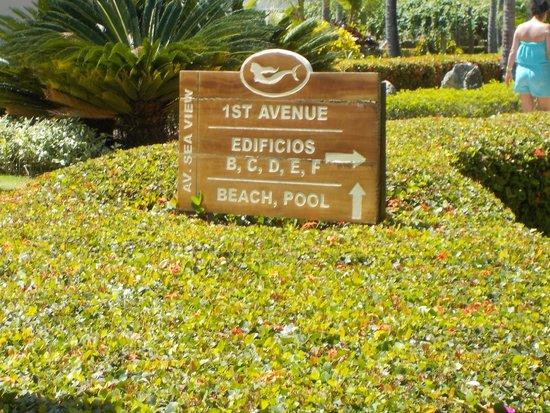 Sirenis Punta Cana Resort Casino & Aquagames: Indicaciones