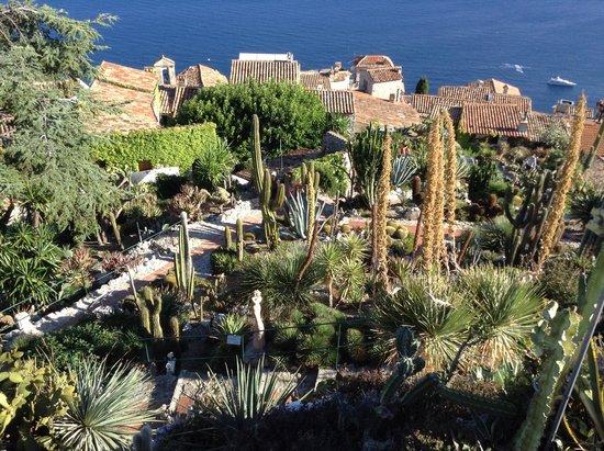 Le Jardin exotique d'Eze : The view