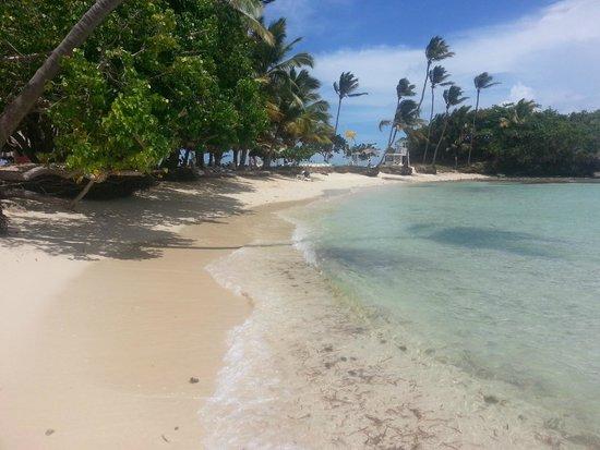 Luxury Bahia Principe Cayo Levantado Don Pablo Collection : Beach by the pool