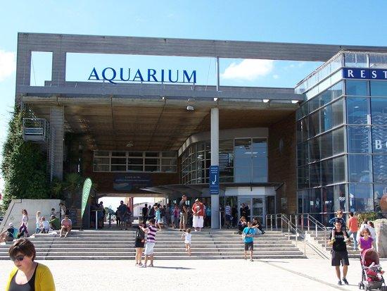 Aquarium La Rochelle : Entrée de l'aquarium
