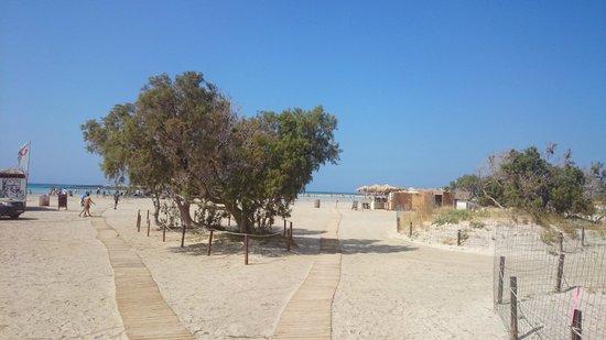 Playa de Elafonisi: Entering the beach