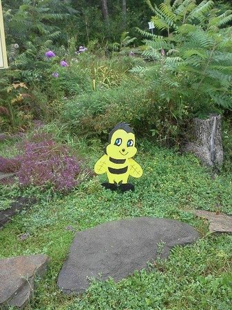 Nipissing, Canada: The only bee to be seen on a rainy day :)