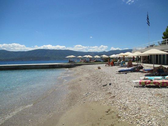 Kalamaki Beach Hotel: The beach