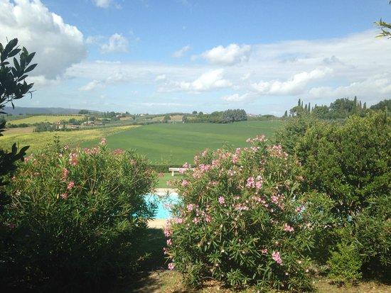 Villa La Lodola : scendendo la scala della piscina