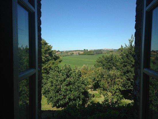 Villa La Lodola : vista dalla camera