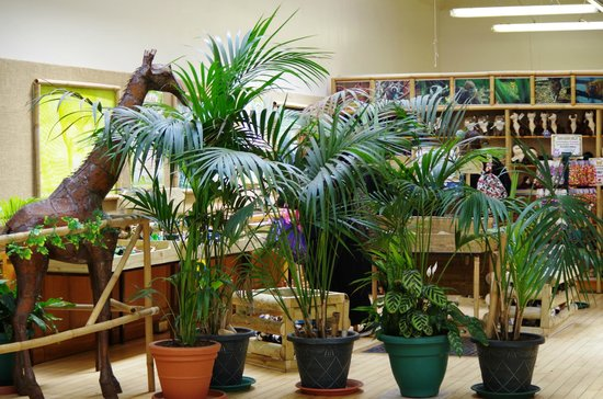 Birmingham Wildlife Conservation Park: The Park Gift Shop