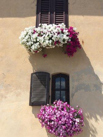 Certaldo: Balconi fioriti