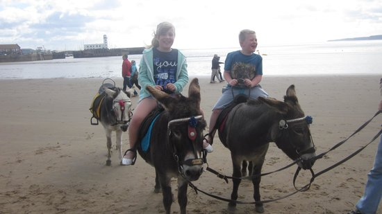 Grand Hotel Scarborough : Joey and Oscar thats the donkeys not the kids