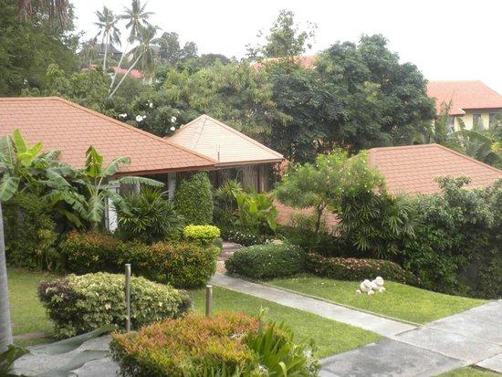 Palm Coco Mantra: Garden Area
