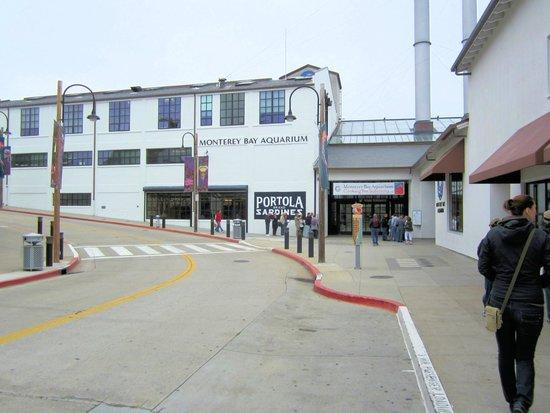 Monterey Bay Aquarium: Eingang
