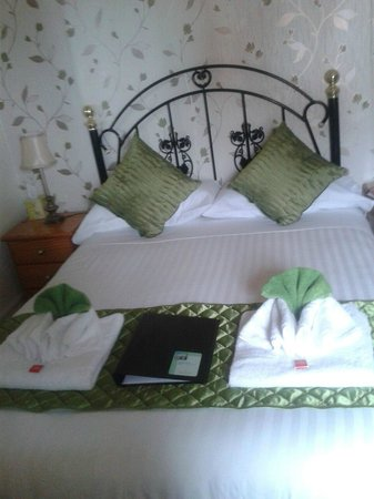 The Fossil Tree Hotel : Standard double room