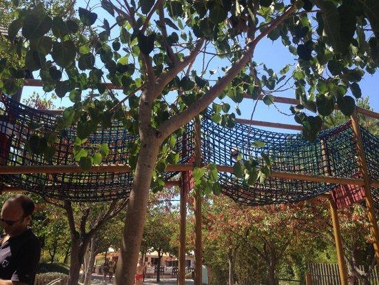 Parque De La Paloma: Rope bridge