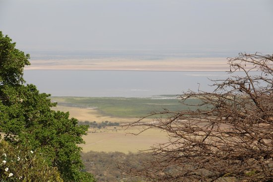 Lake Manyara Wildlife Lodge: View