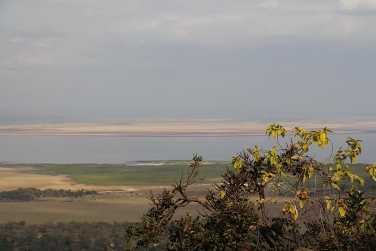 Lake Manyara Wildlife Lodge: Lake Manyara view