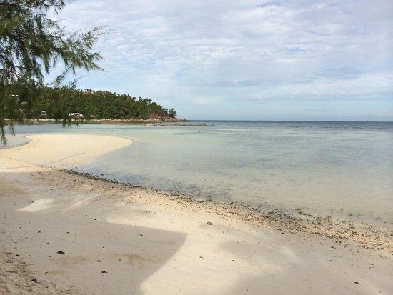 Green Papaya Resort : Plage du Green papaya