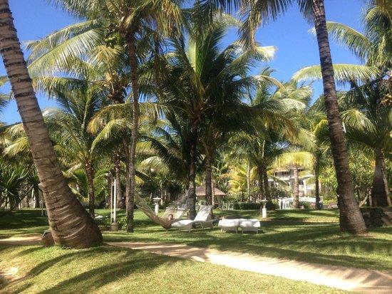 LUX* Belle Mare: Les jardins de l'hôtel: une végétation luxuriante