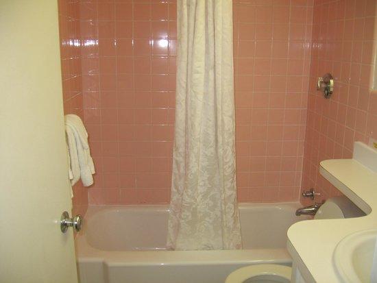 Hamilton Village Inn: Vintage bath