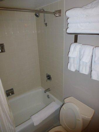 Radisson Hotel Corning: The Bathroom