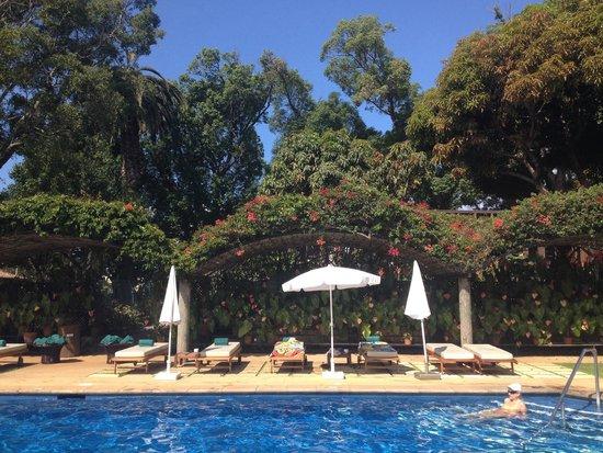 Quinta da Casa Branca: Pool area