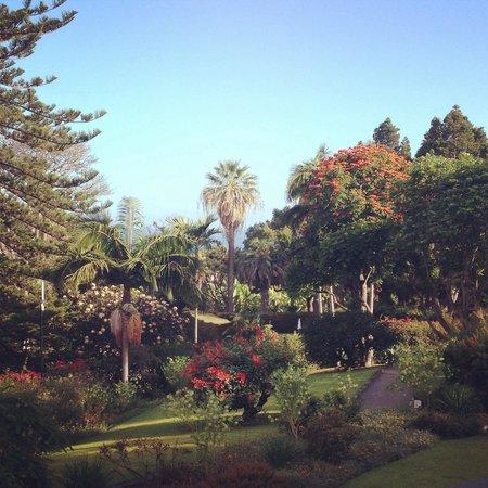 Quinta da Casa Branca: View from deck bar