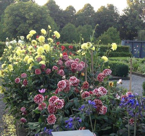 De Kas: beautiful garden settting