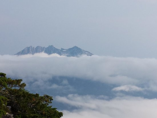 Clayoquot Wilderness Resort: Above the clouds hoping the fog keeps up there
