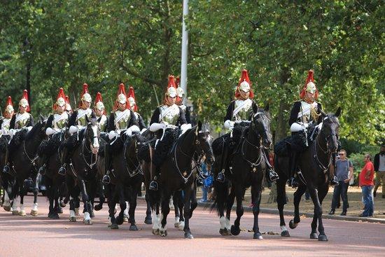 Fun London Tours: Horse guard