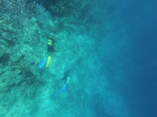 Ras Um Sid : diving the reef
