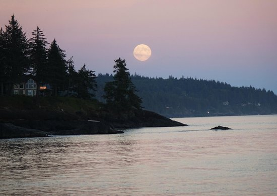Point-No-Point Resort : Moon Rise from The Point