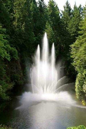 Butchart Gardens: Ross Fountain
