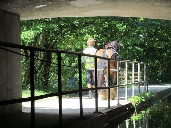 Pontcysyllte Aqueduct: Exiting a tunnel.