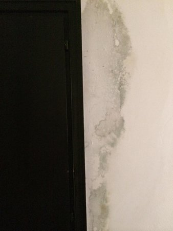 Hotel Dar El Olf: Mur couloir