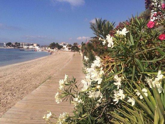 Hotel Victoria : Boardwalk along the beach
