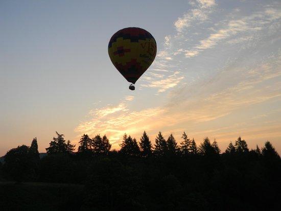 Vista Balloon Adventures : Sunrise