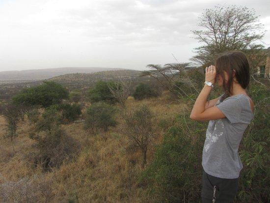 Serengeti Sopa Lodge: Disfrutando de la vista desde la Piscina. Se pueden avistar cebras, jirafas, bufalos y elefantes