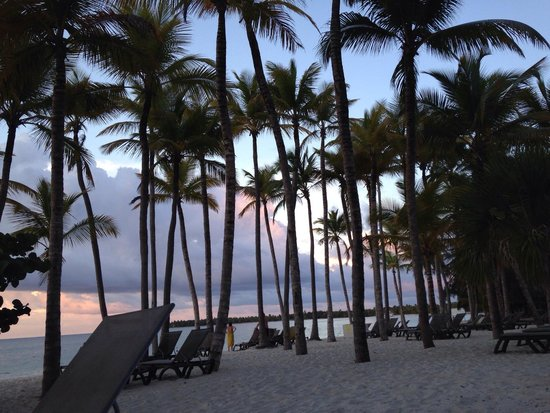 Barcelo Bavaro Beach - Adults Only: ...sunset at Beach...