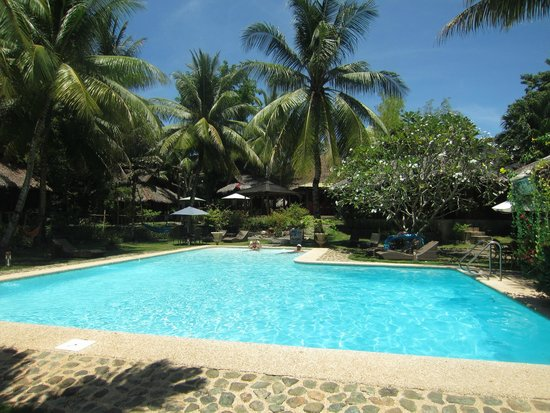 Oasis Resort: piscine
