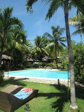 Oasis Resort: piscine et jardin