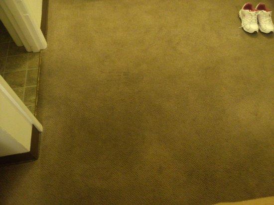 Blue Coast Inn & Suites: More stains on carpet.